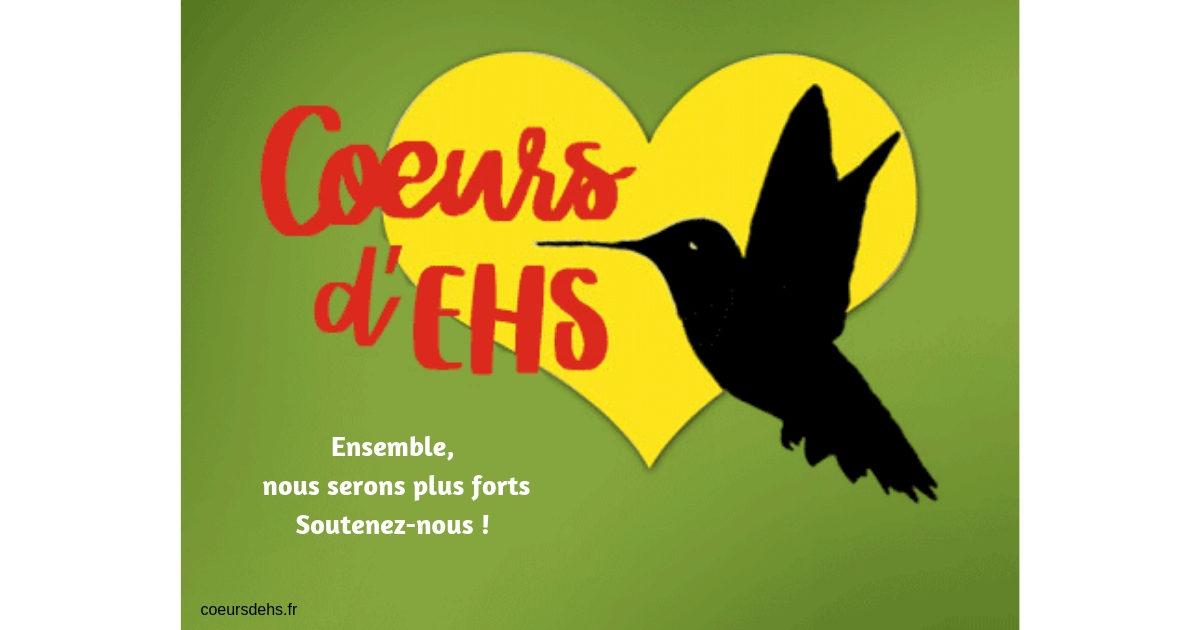 Soutenir Cœurs d'EHS : Campagne d'adhésions et dons 2018-2019