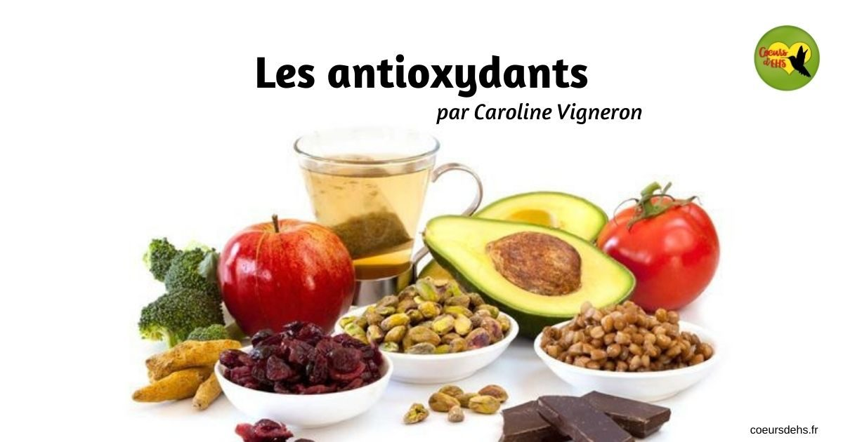 Les antioxydants – Caroline Vigneron
