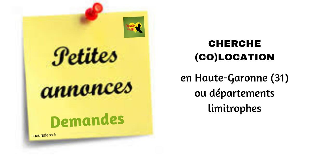 Cherche (co)location, en Haute-Garonne (31)
